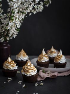 Pavlova, Macarons, Cheesecake, Cupcakes, Desserts, Food, Posts, Tailgate Desserts, Cupcake Cakes