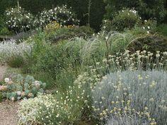 beth chatto garden east anglia 2006