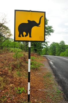 Most places have road signs warning drivers about crossing cows, but at the Victoria Falls Safari Lodge you'll find this sign. http://eagerjourneys.com/victoriafalls/