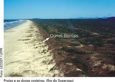Ilha de Superagui. Dunas frontais. Serviço Geológico do Paraná - Mineropar