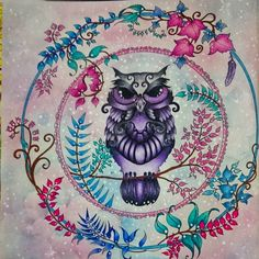 Owl enchanted forest by Nayara Habermann