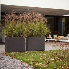 Garden Dividers, Trough Planters, Garden Privacy, Exterior, Outdoor Living, Outdoor Decor, Backyard Landscaping, Landscaping Ideas, Garden Inspiration