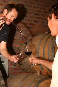 Barrel tasting at Saronsberg cellar. Cellar, Barrel, Places, Lugares, Crates