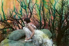 SHAE ACOPIAN DETAR - Fine Artist & Photographer - Blog