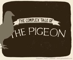 Complex tale of pigeon - Animation by Paulo Lombardi. Animation made for an Amstel ad. I animated the pigeon.