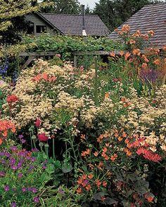 martha stewart garden tour - Google Search