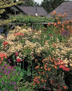 martha stewart garden tour - Google Search