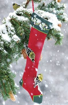 Embroidered Holiday Thistle Sock makes a great winter feeding spot for finches and others. Vibrant Thistle Feeder features a velcro closure at the top for easy filling and secure closure. Sturdy polye