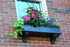 Evolution of Style: Window Box Wonderland