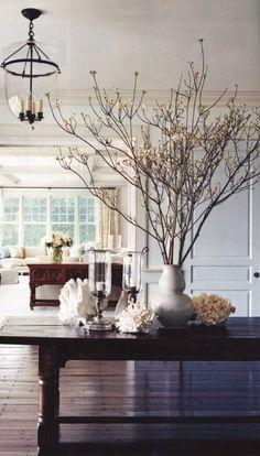 branches/sealife