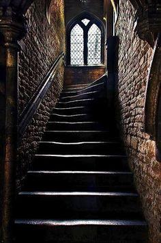 Dark Castle, Hogwarts, Paradis Sombre, Slytherin Aesthetic, Wow Art, Brown Aesthetic, Beautiful Architecture, Stairs Architecture, Interior Architecture