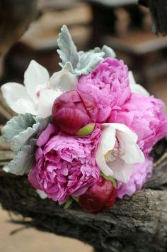 Considerada la flor de la prosperidad, las peonías simbolizan el lujo y la sofisticación. En los últimos años su uso para elaborar ramos de noviay hacer decoraciones de boda se ha extendido gracias a su aroma, la belleza de sus pétalos y sus suaves colores.[caption…