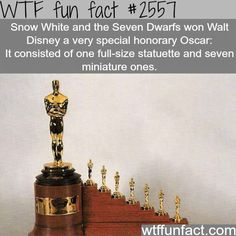 WTF Fun Facts is updated daily with interesting & funny random facts. We post about health, celebs/people, places, animals, history information and much more. New facts all day - every day! Wtf Fun Facts, True Facts, Funny Facts, Random Facts, Crazy Facts, Funny Quotes, Funny Disney Facts, Disney Memes, Disney Princess Facts