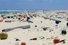 Garbage: marine debris of all types wash ashore on Laysan Island in Hawaii Marine Debris, Waste Container, Ocean Pictures, You Wake Up, Plastic Pollution, Love Mom, Thinking Outside The Box, Funny Dating Quotes, Hawaiian Islands