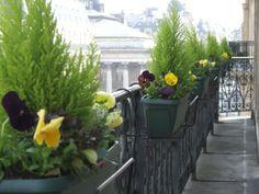 www.fleursaubalcon.com  Jardinières fleuries livrées à domicile.   Jardinière en ligne.