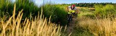 Biketouren in den Vogesen? Wir von www.ride-les-vosges.ch kennen alle Singletrails in dieser atemberaubend schönen Region!