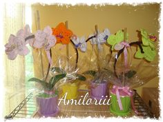 www.facebook.com/pages/Amiloriii/238514389630165
