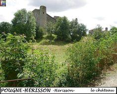79POUGNE-HERISSON_herisson_chateau_104.jpg