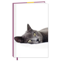 Cats Protection A6 Notebook
