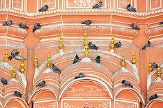 Jaipur - Rajasthan, India | Cosmin Danila Photography - I See Beautiful People