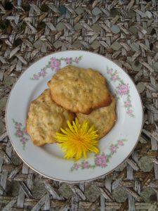 Dandelion cookies--this site says you can roast the root and use it in place of coffee, just like what was done with chickory, in our Civil War!  Dandelions are no longer considered a weed in my book!