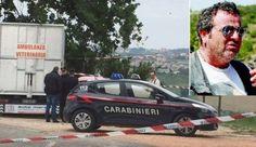 Omicidio Veterinario:  Andreucci il fantino aveva assunto nella notte 4 grammi di cocaina