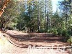 3638 Stope Dr, Placerville, CA 95667 — Nice 2.5 Acre Parcel With Roughed in Driveway and Pad. Local Airport and Great Restaurant in The Community Beautiful Countryside With Lots Of Trees and Small Lakes Throughout Swansboro Country. The El Dorado National Forest Is Just A Short Drive Away.