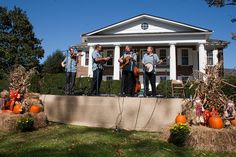 Bluegrass on the mansion lawn at Wilderness Road State Park, Virginia