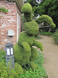 The rabbit topiary is located at the Elizabeth Gamble Gardens in Palo Alto, CA