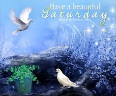 Have a beautiful saturday quotes quote saturday saturday quotes happy saturday saturday quote