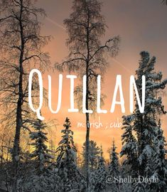 Quillan - cool baby boy name! Pronounced: kwill-in