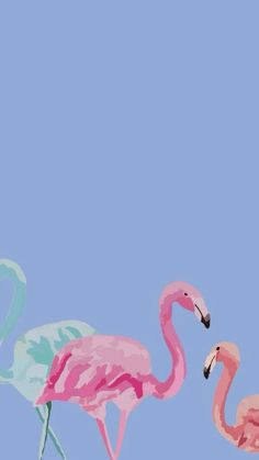 Wallpaper Words Wallpaper, Mac Wallpaper, Wallpaper Backgrounds, Iphone Wallpapers, Desktop, Flamingo Wallpaper, Homescreen, Cute Designs, Cute Cartoon