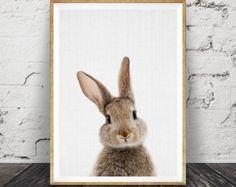 Rabbit Tail Print Nursery Wall Art Gender Neutral by LILAxLOLA