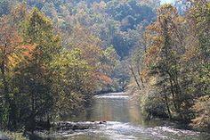 Teresa Johnson - Blue Ridge Mountain River