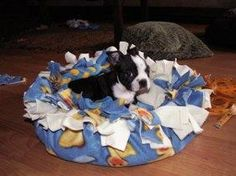 I've been looking all over the place for an inexpensive, durable, easy to make, and washable dog bed! The directions on how to do it are included.