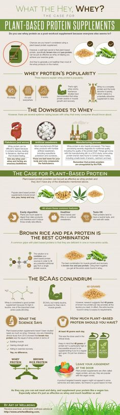 The TRUTH on HOW MUCH PROTEIN you REALLY need per day for ...