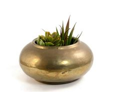 Vintage Hammered Brass Planter with Patina Round Succulent