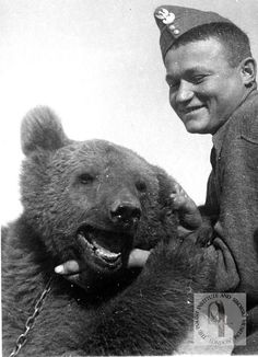Wojtek in Iraq, 1942. Courtesy of the Polish Institute and Sikorski Museum. - See more at: http://britishlibrary.typepad.co.uk/european/2015/11/wojtek-the-soldier-bear-from-the-polish-army.html#sthash.nwhcjBAd.dpuf