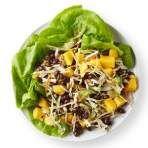 Black Bean & Mango Salad Recipe
