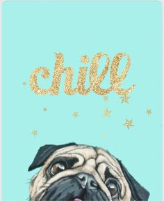 chill pug Black Girl Art, Art Girl, Pug Wallpaper, Cute Stitch, Black Pug, Tumblr, Cute Pugs, Cute Doodles, Pug Love