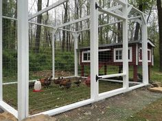 Post with 1833 views. Chicken Coop Rebuild and New Run Chicken Pen, Diy Chicken Coop, Box Building, Nesting Boxes, Cinder, Chickens Backyard, Restoration, Diy Projects, Outdoor Structures