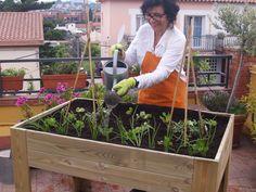 Ana ya tiene su primer #huerto urbano! Bienvenida a EcoBrotes! www.ecobrotes.es