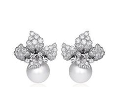 David Webb South Sea Pearl Earrings l Shreve Crump and Low
