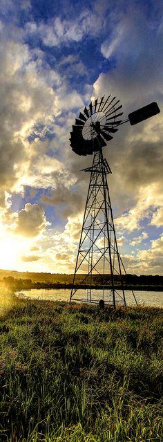 Windmill sun set