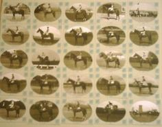 Racehorse Winners of the 1950's complete set of 25 Limited Edition Trading Cards