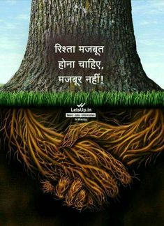 Strong deep business roots as a tree trunk with the root in the shape of a hand shake as a symbol of unity trust and integrity in finance and relationships - buy this stock illustration on Shutterstock & find other images. Italian Quotes, Stop Caring, Have A Good Night, Kundalini Yoga, Osho, True Words, Hindi Quotes, Quotations, Mother Earth