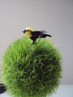 OOAK Dollhouse Miniature Yellow Headed Blackbird one bird. $1.25, via Etsy.