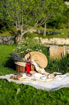 Picnic and wine for two