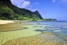 Tunnels Beach, Kuaui, HI.  Best Snorkling site ever...