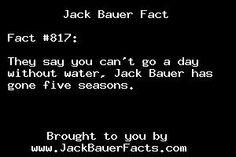 Jack Bauer fact